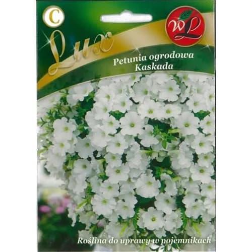 Petunie Kaskada albă Legutko imagine 1 articol 78669