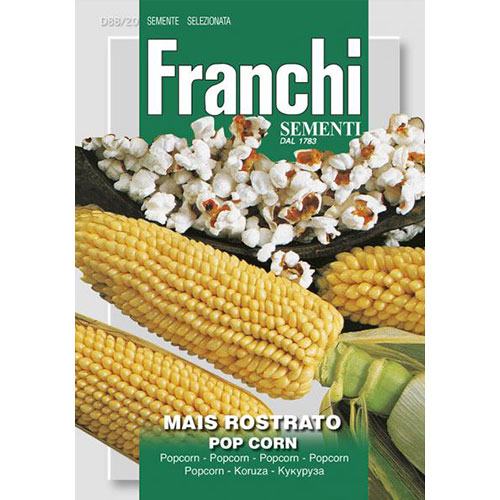 Porumb Pop Corn imagine 1 articol 87163