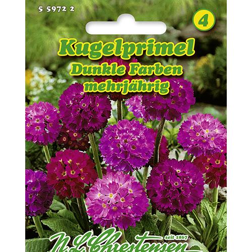 Primula Dark Colors, mix multicolor Chrestensen imagine 1 articol 86182