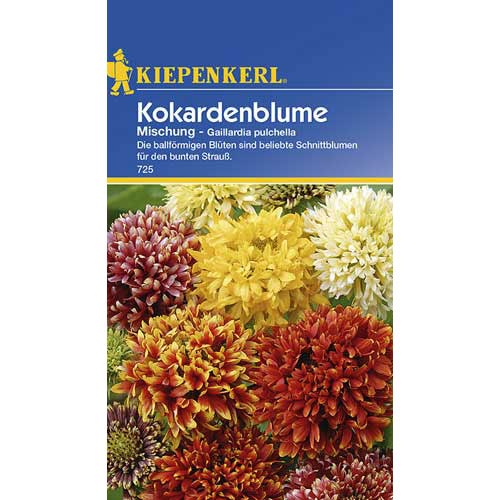 Roata de foc (Gailardia) mix multicolor Kiepenkerl imagine 1 articol 77433
