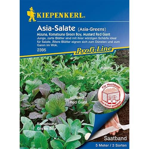 Salată asiatică, amestec de soiuri Kiepenkerl imagine 1 articol 87291