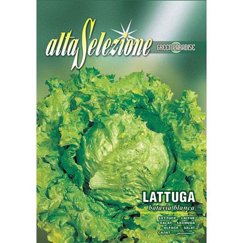 Salată Batavia blanca imagine 1 articol 87170