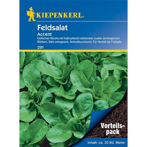 Salată de câmp (Fetică) Accent Kiepenkerl imagine 1 articol 77494
