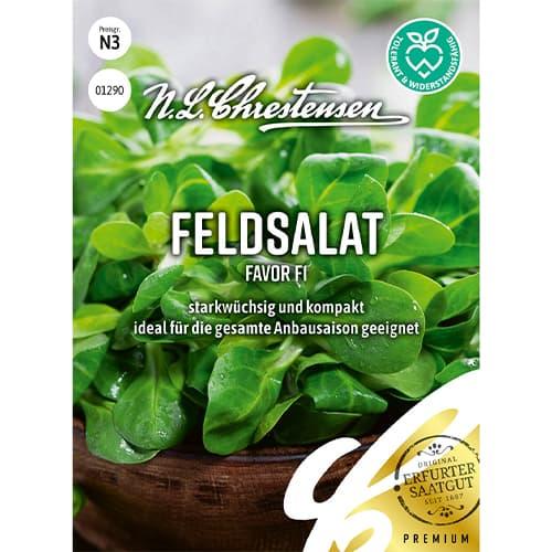 Salată de câmp (Fetică) Favor F1 Chrestensen imagine 1 articol 86039