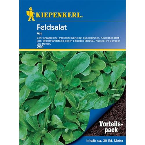 Salată de câmp (Fetică) Vit Kiepenkerl imagine 1 articol 77495