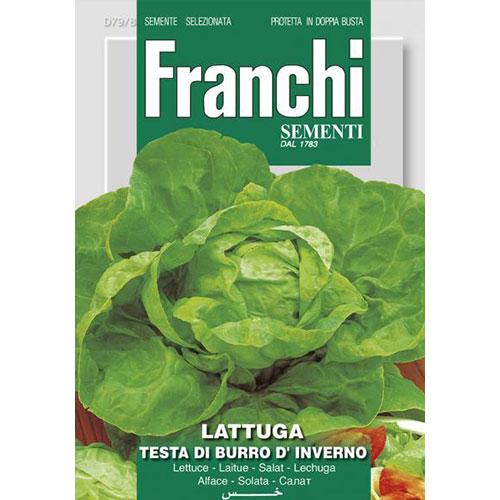 Salată de capățână Testa di Burro d'Inverno imagine 1 articol 87174