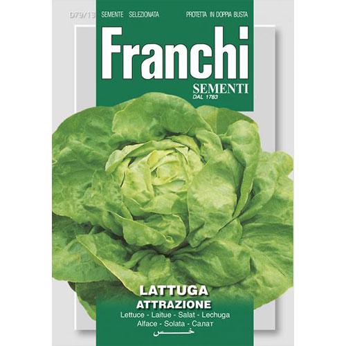 Salată de capătână Attrazione imagine 1 articol 87173