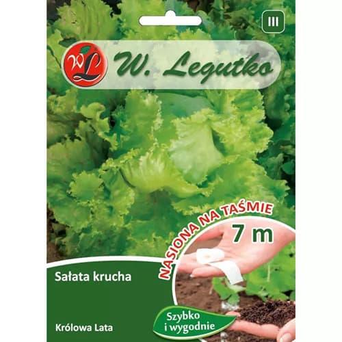 Salată de capătână Krolowa Lata Legutko imagine 1 articol 78499