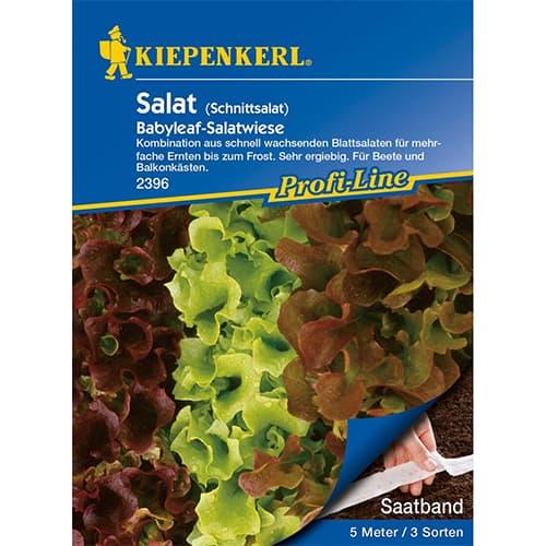 Salată de frunze Baby Leaf, amestec de soiuri Kiepenkerl imagine 1 articol 87294