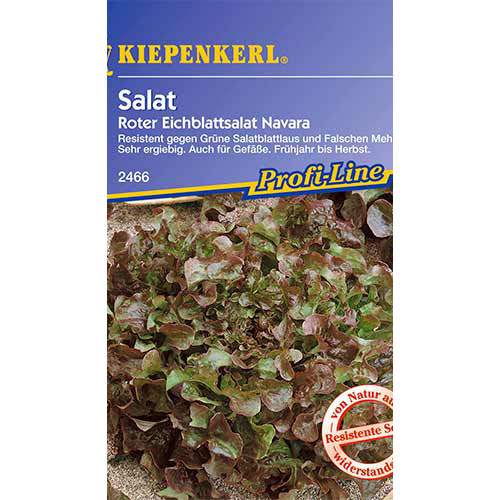 Salată de frunze Navara Kiepenkerl imagine 1 articol 86440