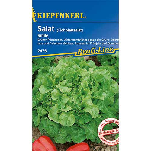 Salată de frunze Smile Kiepenkerl imagine 1 articol 86441