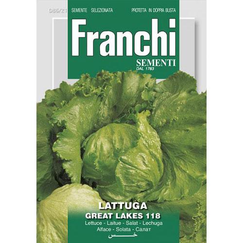 Salată iceberg Great Lakes 118 imagine 1 articol 87175