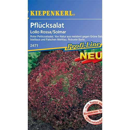 Salată Lollo Rossa Kiepenkerl imagine 1 articol 86475