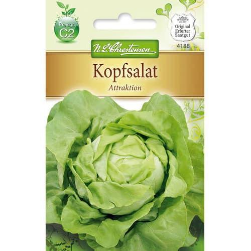 Salată verde Attraktion Chrestensen imagine 1 articol 78768