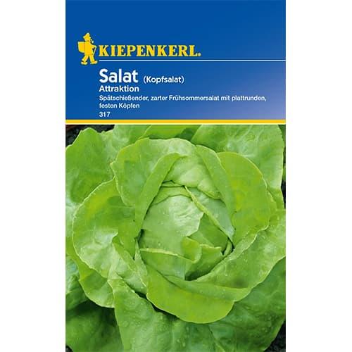 Salată verde Attraktion Kiepenkerl imagine 1 articol 86460