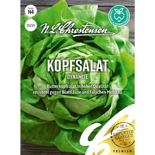 Salată verde Dynamite Chrestensen imagine 1 articol 86053