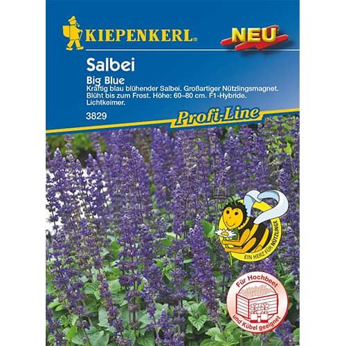 Salvie Big Blue Kiepenkerl imagine 1 articol 86306