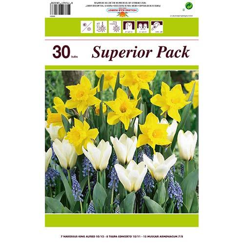 Super ofertă! Narcise, Lalele și Muscari, set de 30 de bulbi imagine 1 articol 67902