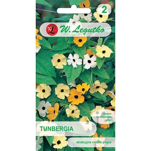 Thunbergia, mix multicolor Legutko imagine 1 articol 69636