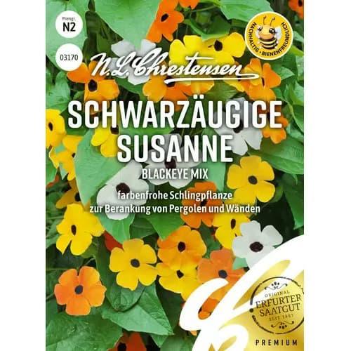 Thunbergia Susanne Blackeye, mix multicolor Chrestensen imagine 1 articol 87355
