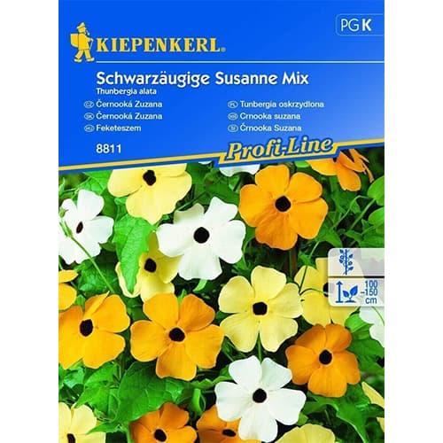 Thunbergia Susanne, mix multicolor Kiepenkerl imagine 1 articol 86310