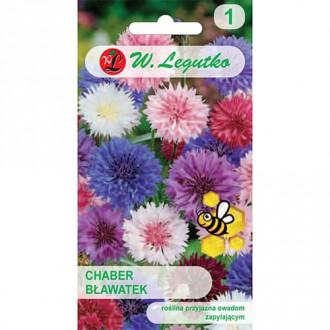 Albăstrele, mix multicolor Legutko imagine 3