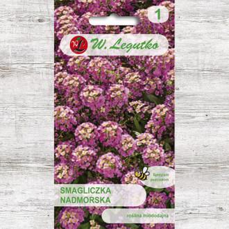 Alyssum roz Legutko imagine 5