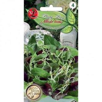 Baby Leaf - Amestec dietetic Legutko imagine 8