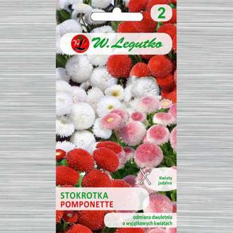 Bănuței Pomponette, mix multicolor Legutko imagine 1