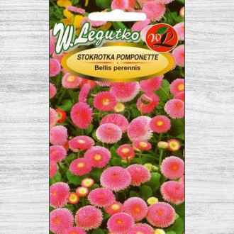 Bănuței roz Pomponette Legutko imagine 3