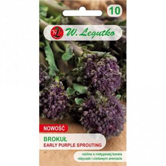 Broccoli Early Purple Legutko imagine 3