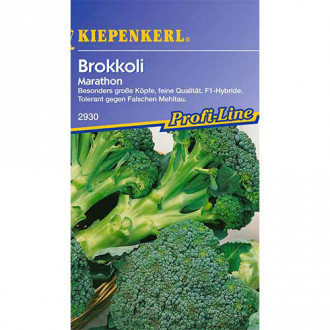 Broccoli Marathon F1 Kiepenkerl imagine 6