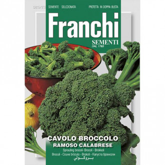 Broccoli Ramoso Calabrese imagine 8