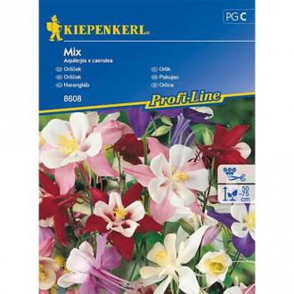 Căldărușă (Aquilegia) mix multicolor Kiepenkerl imagine 4