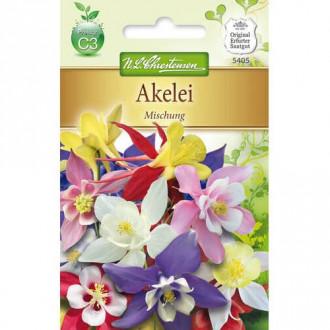 Căldărușă (Aquilegia), mix multicolor Chrestensen imagine 2