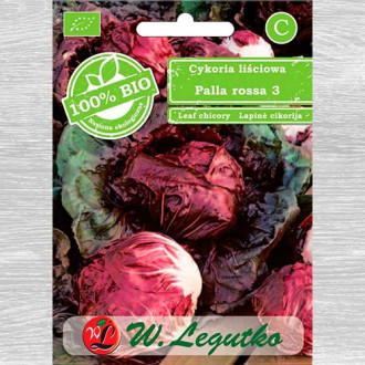 Cicoare roșie (radicchio) Palla Rossa Legutko imagine 1