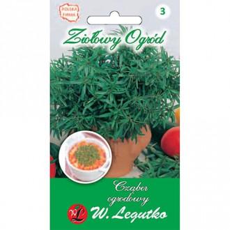 Cimbru de grădină Legutko imagine 2