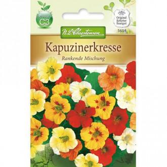 Condurul doamnei, mix multicolor Chrestensen imagine 3