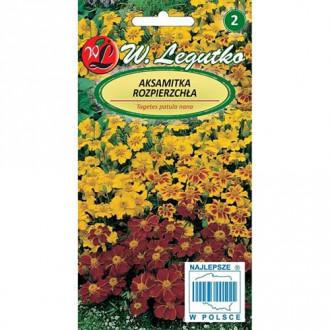 Crăițe Bonanza series, mix multicolor Legutko imagine 1