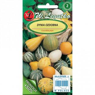 Dovleac decorativ, mix multicolor Legutko imagine 6