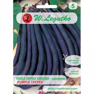 Fasole Purple Teepee Legutko imagine 1