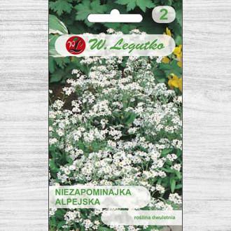 Floare de nu mă uita albă Legutko imagine 3