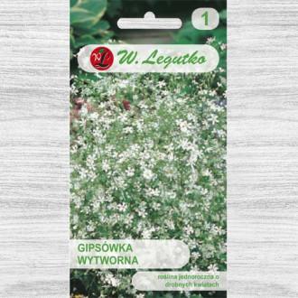 Floarea miresei (Gypsophila) albă Legutko imagine 1
