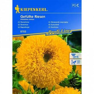 Floarea soarelui decorativă gigant Chrestensen imagine 7