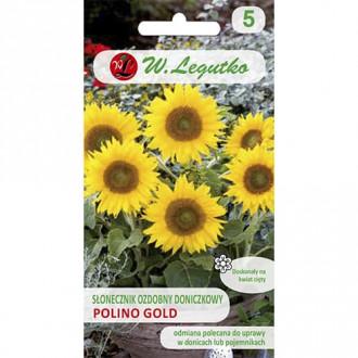 Floarea soarelui decorativă Polino Gold Legutko imagine 3