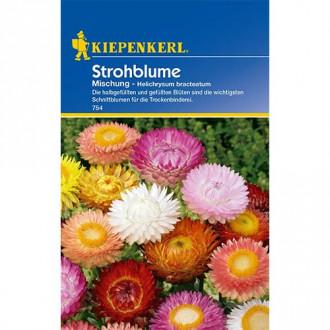 Flori de paie, mix multicolor Kiepenkerl imagine 1