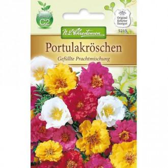 Flori de piatră, mix multicolor Chrestensen imagine 1
