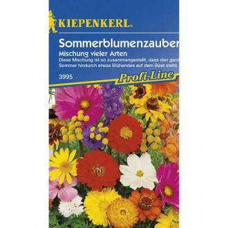 Flori de vară Magic, mix multicolor Kiepenkerl imagine 4