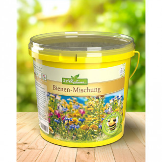 Flori de vară pentru albine, mix multicolor Chrestensen imagine 5