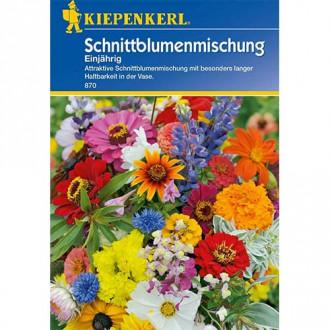 Flori pentru tăiere, mix multicolor Kiepenkerl imagine 3